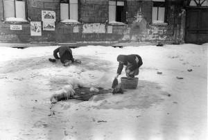 ЛЕНИНГРАД, 1943 г.